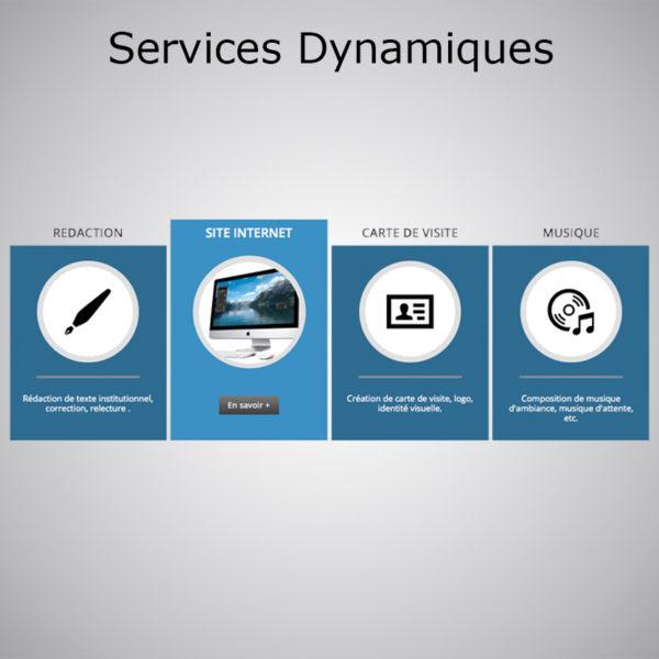 Plugin Services Dynamiques Showreel