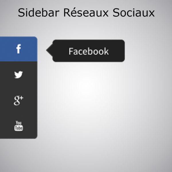 Plugin Sidebar Réseaux Sociaux