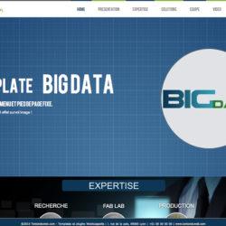 Template Big Data WebAcappella