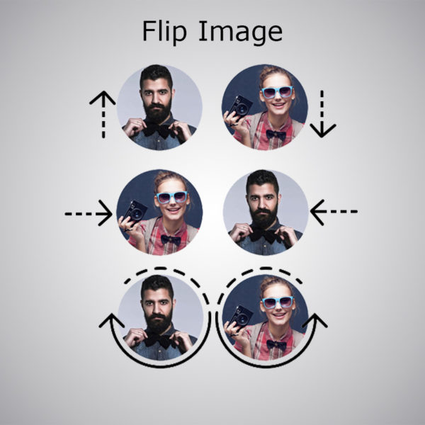 Plugin Flip Image WebAcappella