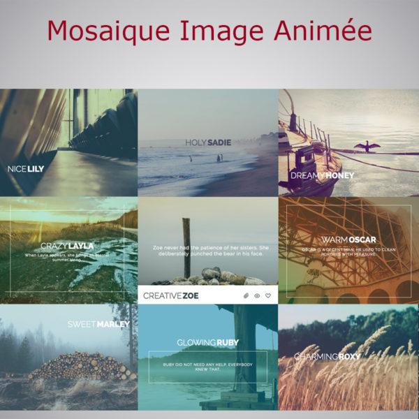 Mosaique Images Animées WARC