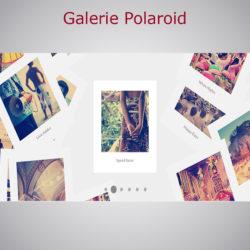 plugin galerie polaroid