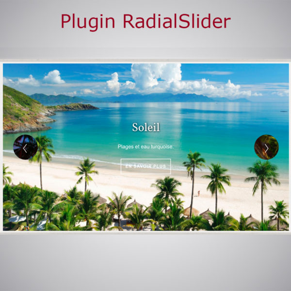 Plugin Radial Slider WARC
