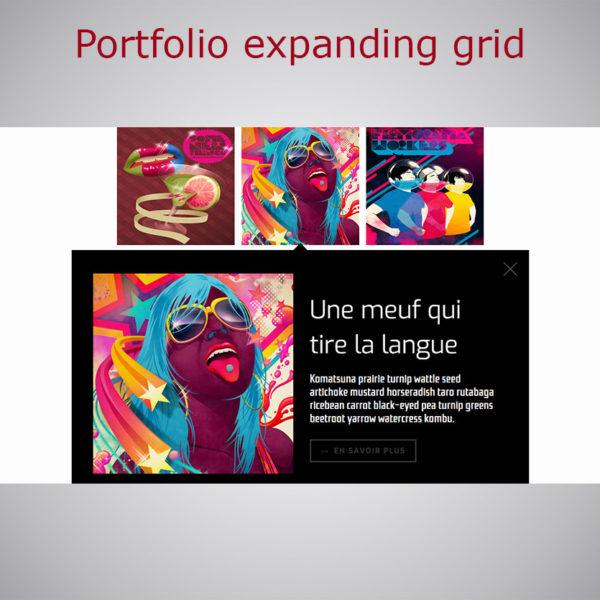 Portfolio expanding grid WebacAppella